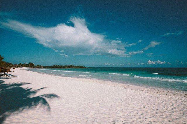 XPU-HA Se encuentra en Quintana Roo al sur de Playa del Carmen. XPU-HA es un parque ecológico rodeado de arenas blancas casa del cenote Manatee y la laguna XPU-HA apodada tras el lugar donde se encuentra. Entre las actividades disponibles están: buceo recorridos por cenotes y navegación en catamaranes así como meditación y yoga frente al mar. #playa #mar #beach #sea #méxico #vacaciones #viajar #travel #trip #arena #sand #sol #sun  via ROBB REPORT MEXICO MAGAZINE OFFICIAL INSTAGRAM - Luxury…