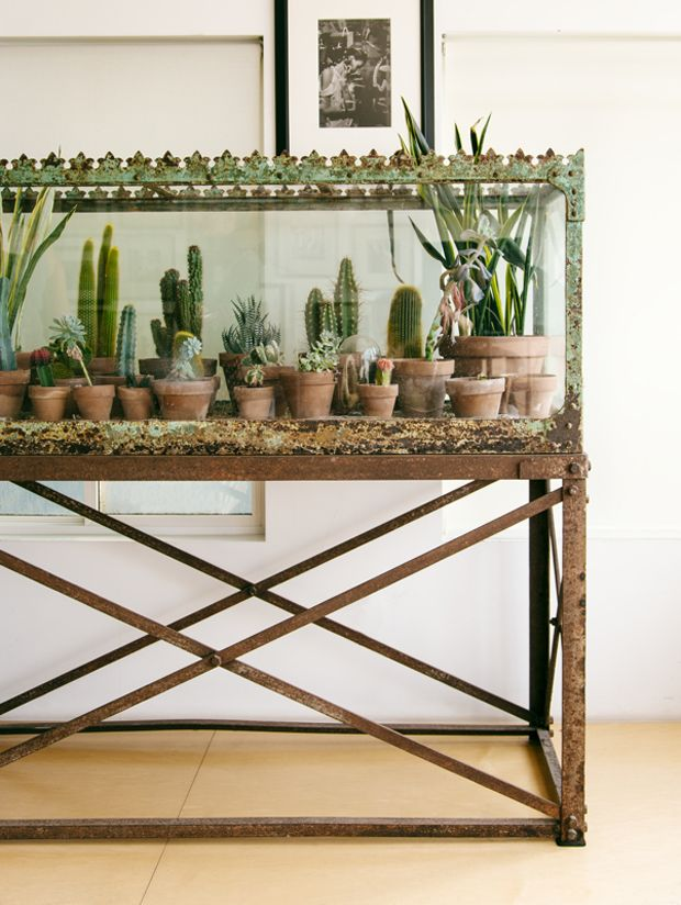 One of the most popular plant images from The New Bohemians, this crazemazing terrarium from Arielle's beachfront home is extra stunning thanks to the unbelievably cool Victorian aquarium it's housed in, but even if you're working with a modern day aquarium, or other glass enclosure, you can easily put together your own little desert oasis. …