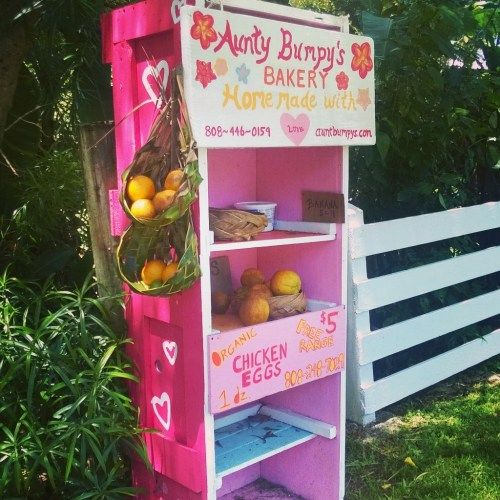 Fruit stands and honest boxes