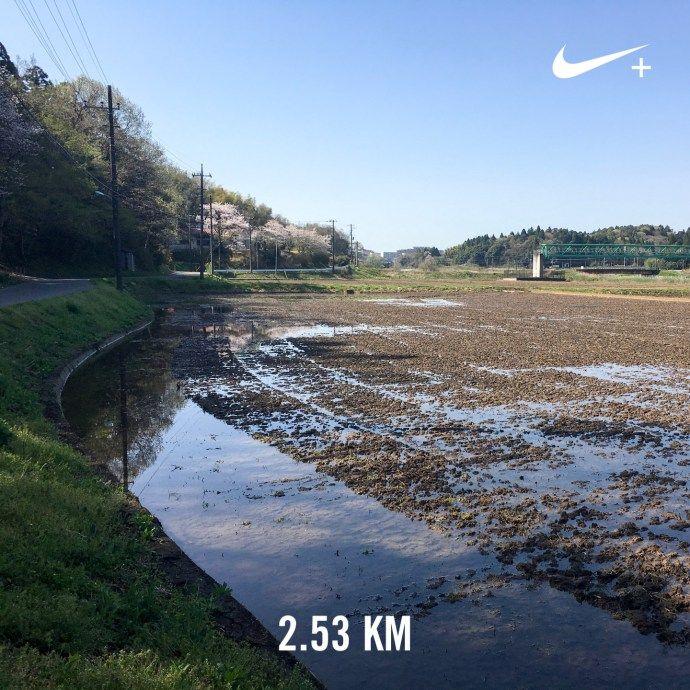 素足に短パンでOK!   ランニング日記(2017.04.14)   ランニング   走る薬剤師 大徳秀幸 公式ブログ
