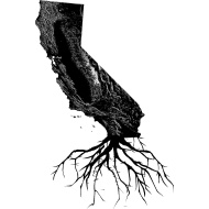 California roots. Cool tattoo idea.