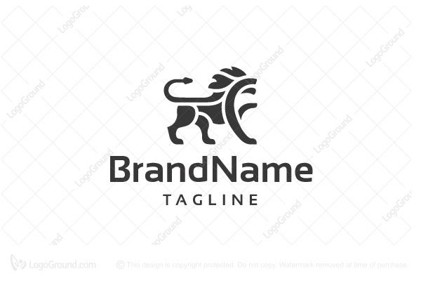 best 25  lion logo ideas on pinterest