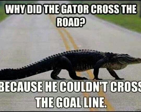 GatorHater