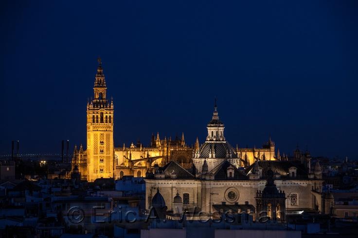 Giralda and Cathedral at night.