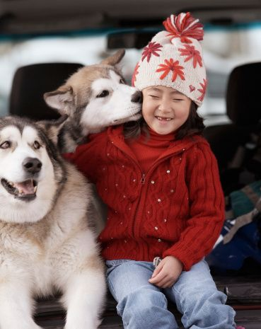 Huskys with child.  How I miss little husky kisses from Kenai.