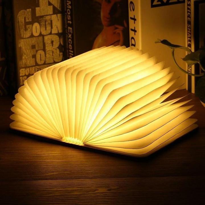 Le Livre Lumineux Zen Une Lampe Dans Votre Livre