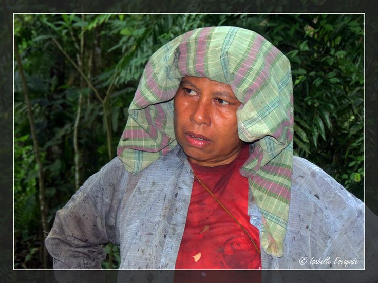 Sumatra... elle cultive le caoutchouc dans la jungle...  http://indonesie.eklablog.com http://www.my-art.com/isabelle-escapade/collections/indon%C3%A9sie