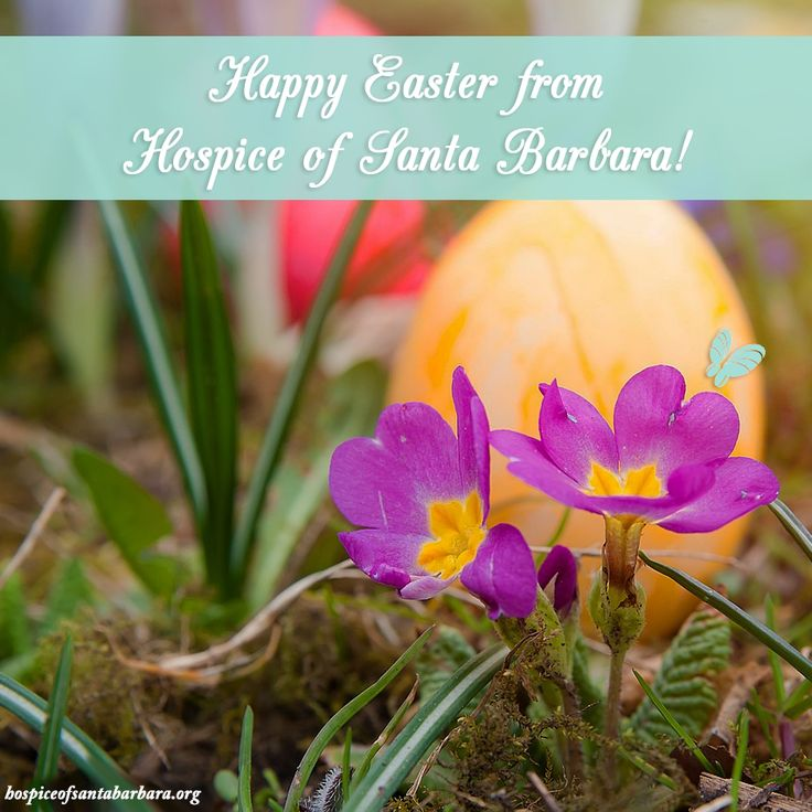 Happy Easter from Hospice of Santa Barbara! Wishing you a day filled with love, peace and happiness.