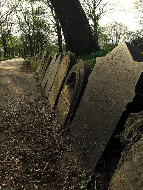 The stones continue on both sides of the path for around 300 yards.  Hartlepool, UK.  #cemetery #grave_stone  #head_stone