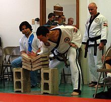 This is what you can do when you are a master in taekwondo!