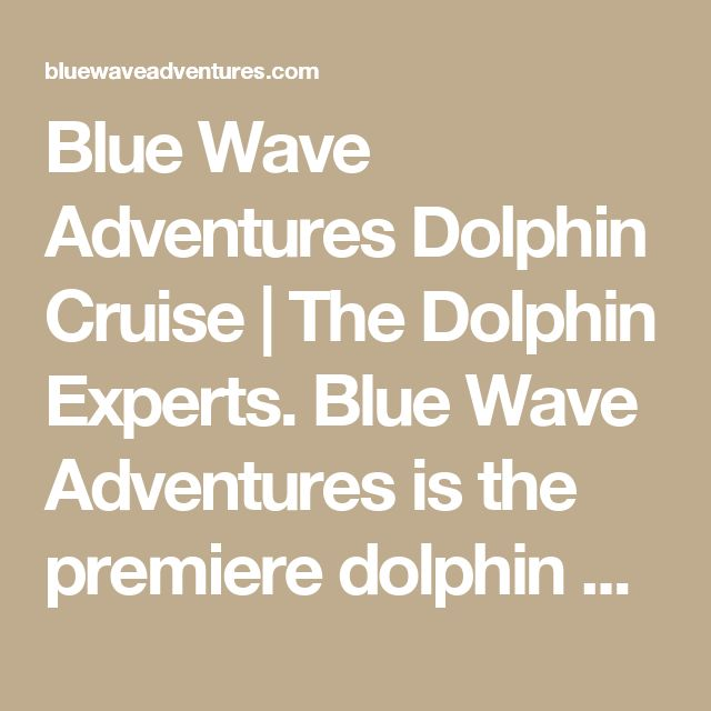 Blue Wave Adventures Dolphin Cruise | The Dolphin Experts.  Blue Wave Adventures is the premiere dolphin cruise experience in the Myrtle Beach South Carolina area.