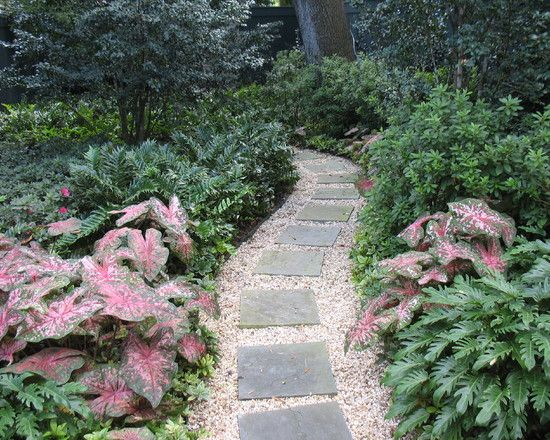 New Orleans Garden Design new orleans landscape design pictures remodel decor and ideas page 4 New Orleans Landscape Design Pictures Remodel Decor And Ideas Page 4