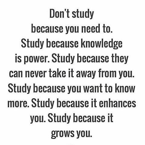 Never stop. Knowledge, for the sake of knowing, is one of the highest callings of the human species.
