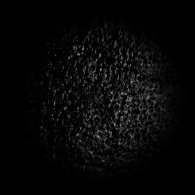 1000 Images About Zbrush Alphas Textures Brushes On