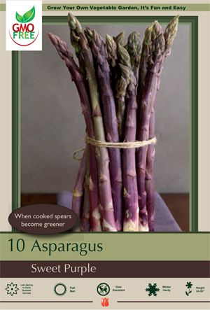 Asparagus officinalis 'Sweet Purple' Larger and more tender option to green asparagus. Wonderfully mild, nutty flavor when cooked; 20% higher sugar content than green varieties makes Sweet Purple delicious even raw! Spears turn green when cooked. Plant in well-drained soil in full sun. Resists fusarium, rust, and crown rot. For best results follow the directions on the back of this package.