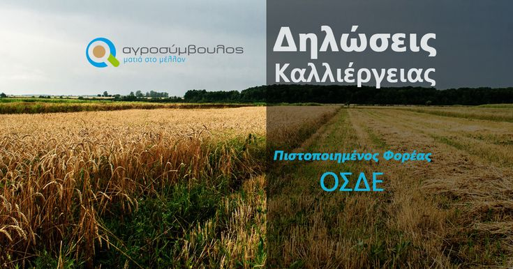 Πύλη ΟΣΔΕ – Δήλωση Καλλιέργειας