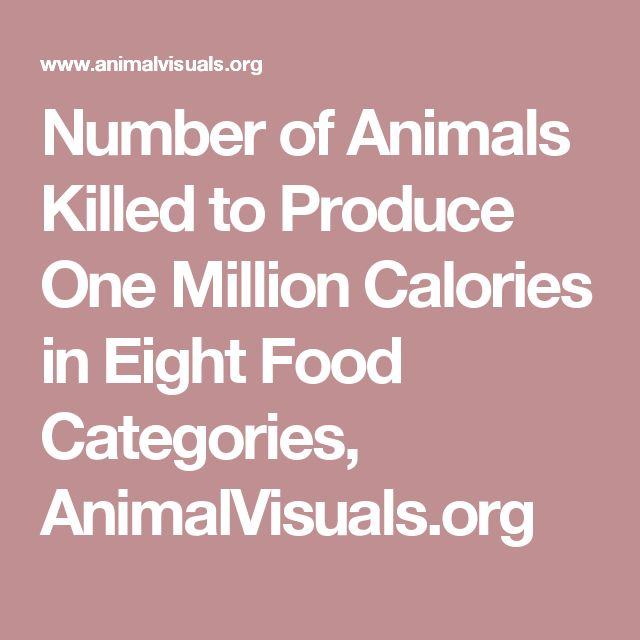 Number of Animals Killed to Produce One Million Calories in Eight Food Categories, AnimalVisuals.org