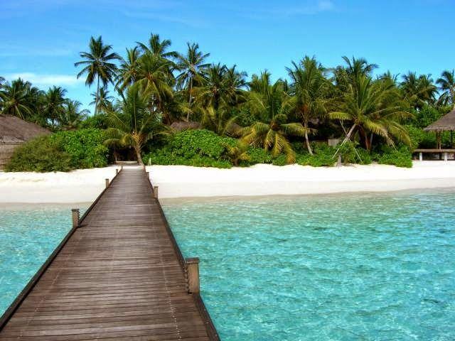 Luke Scintu: Temptation Island: quando la TV conosce il punto p...