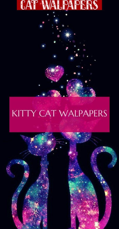 Desktop Cat Walpapers Aesthetic Cat Walpapers Illustrations Cat Walpapers Desktop Hintergrunde Fur Katzen Aesthetic Cat Wallpapers Illustrations Cat Wallpapers In 2020 Cats Illustration Funny Wallpapers Cats