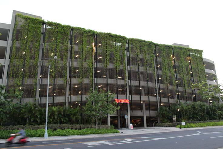 """""""Honolulu built environment photo#1"""" Location- Ward's center new parking garage. The architect designed vegetation vines to grow along a fence up and down the parking garage to create a living wall."""