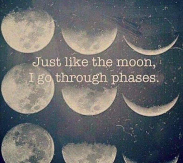 Pin By Makayla Gilliar On Treehugger In 2020 Moon Quotes Quotes Words