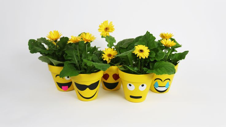 I think it's safe to say everyone is familiar with the emoji craze. Whether it's a simple text, emoji accessories, emoji pillows,clothing or even the upcoming The Emoji Movie, emojis are everywhere. However, have you ever seen emoji flower pots? Yes, you heard correctly, flower pots with your favorite emoji