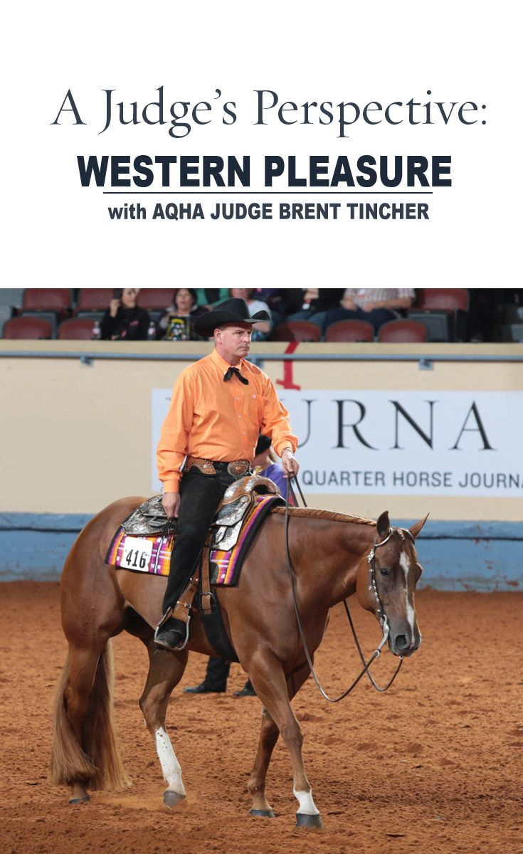 AQHA Judge Brent Tincher explains why the first-and second-place horses were the top senior western pleasure performers at the 2015 AQHA World Show