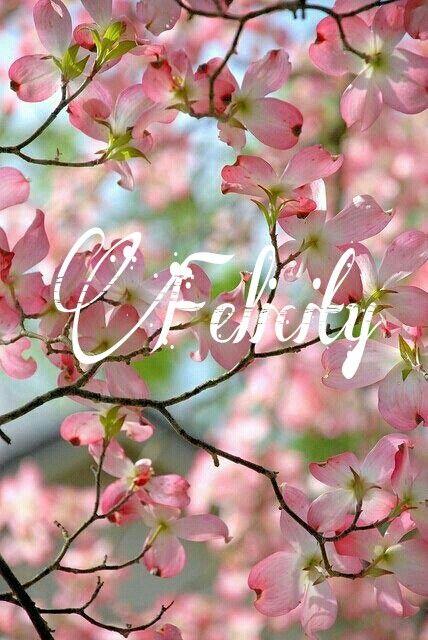 VIDA Statement Bag - Dogwppd Blossoms 119 by VIDA H6LhoTKnH