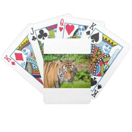 Bengal Tiger on Green Grass Bicycle Playing Cards - cat cats kitten kitty pet love pussy