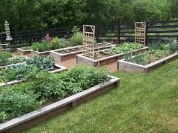 raised beds into a hillside