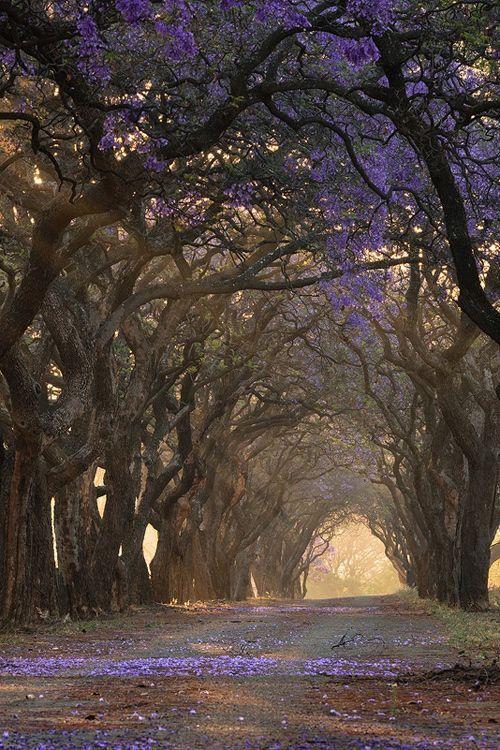 South Africa Pretoria