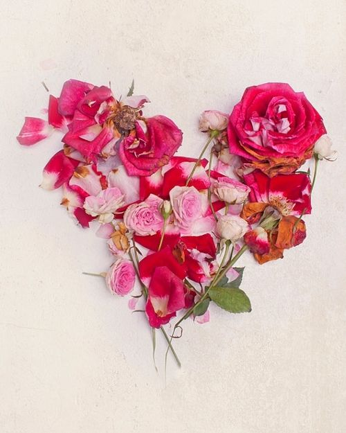 166 best Be My Valentine images on Pinterest   My heart ...