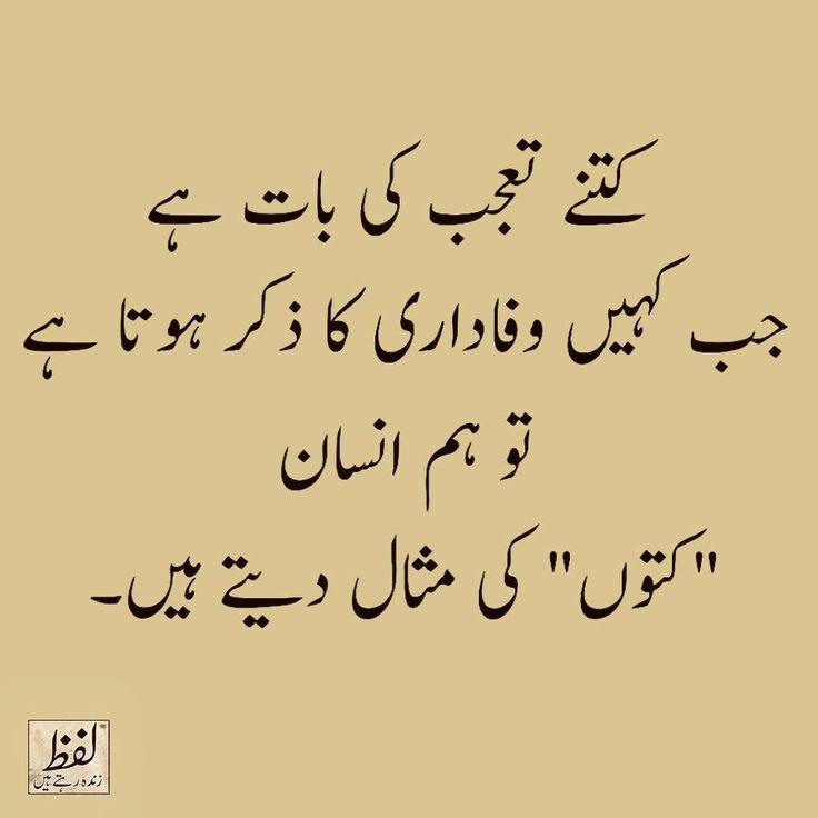 Quotes In Urdu: 1000+ Urdu Quotes On Pinterest