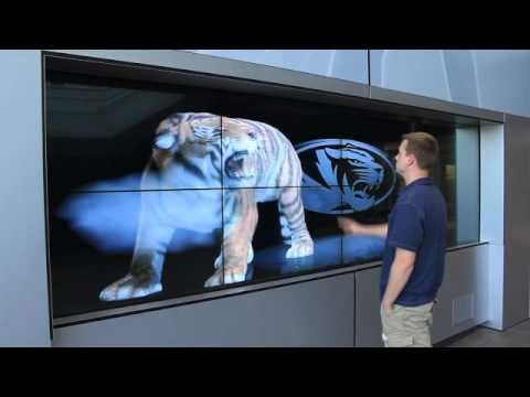 Dimensional Innovations  MU Interactive Tiger Wall Video Wall Touchscreen