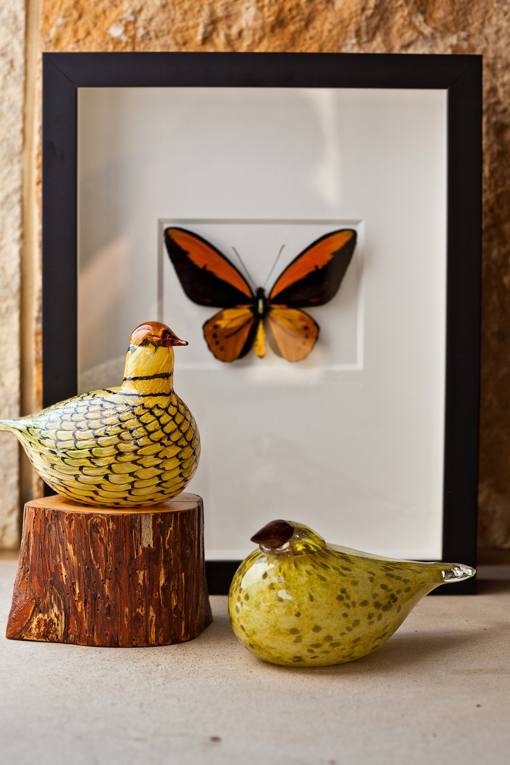 Glass Birds by Oiva Toikka and Insect Artwork by Christopher Marley