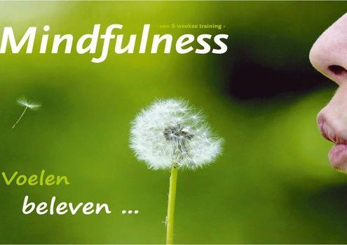 **Mindfulness**  Mindfulness in de Zaanstreek  De Mindfulness training is gebaseerd op het werk van Jon Kabat-Zinn. Hij ontwikkelde een unieke te...