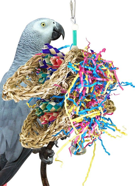 Bonka Bird Toys 3123 Duo Mini Taco Bird Toy In 2020 Bird Toys Birds Mini Tacos