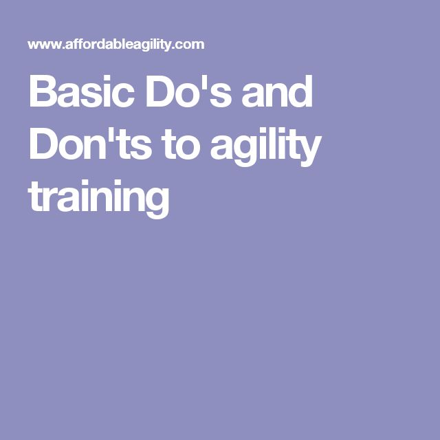 Basic Do's and Don'ts to agility training                                                                                                                                                                                 More