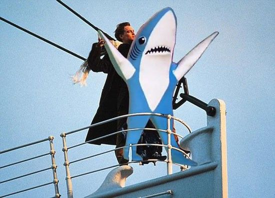 Super Bowl XLIX Memes Left Shark http://www.futebolamericano.eu/nfl/os-memes-do-super-bowl-xlixo