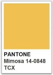 PANTONE 14 0848 Mimosa / Color of the year 2009