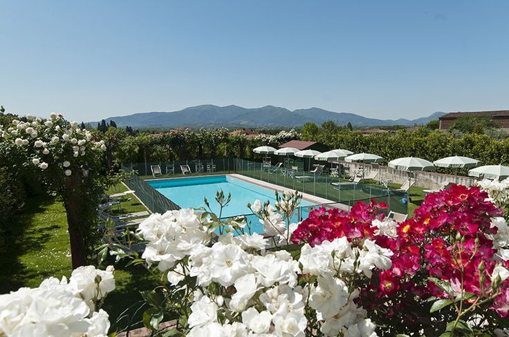 Luxury Vacation Villa for Rent in Lucca | Italy Vacation Villas