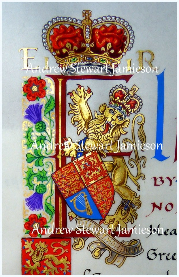 Capital 'E' designed and painted by Andrew Stewart Jamieson. Part of a Royal Letters Patent written and illuminated on vellum.