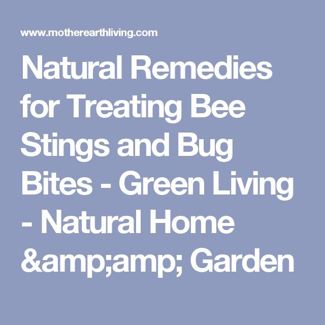 Natural Remedies for Treating Bee Stings and Bug Bites - Green Living - Natural Home & Garden