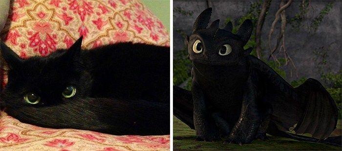 """Ist es eine Katze… oder etwas anderes? Schau dir 16 Fotos von Kätzchen, die täuschend den bekannten Personen und Gegenstanden aus der Popkultur ähnlich sind. Lächeln garantiert! :) 1. Die Kazte wie Ohnezahn aus """"Drachenzähmen leicht gemacht"""". yayomg.com  2. Katze wie Batman. hamsternose 3. Katze wie Adolf Hitler. catsthatlooklikehitler.com  4. Katze wie Brathähnchen. tilly253"""