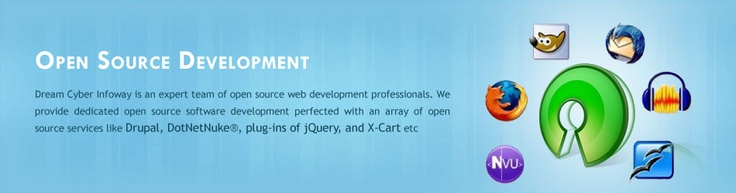 Dream Cyber Infoway Pvt Ltd - Open Source Development