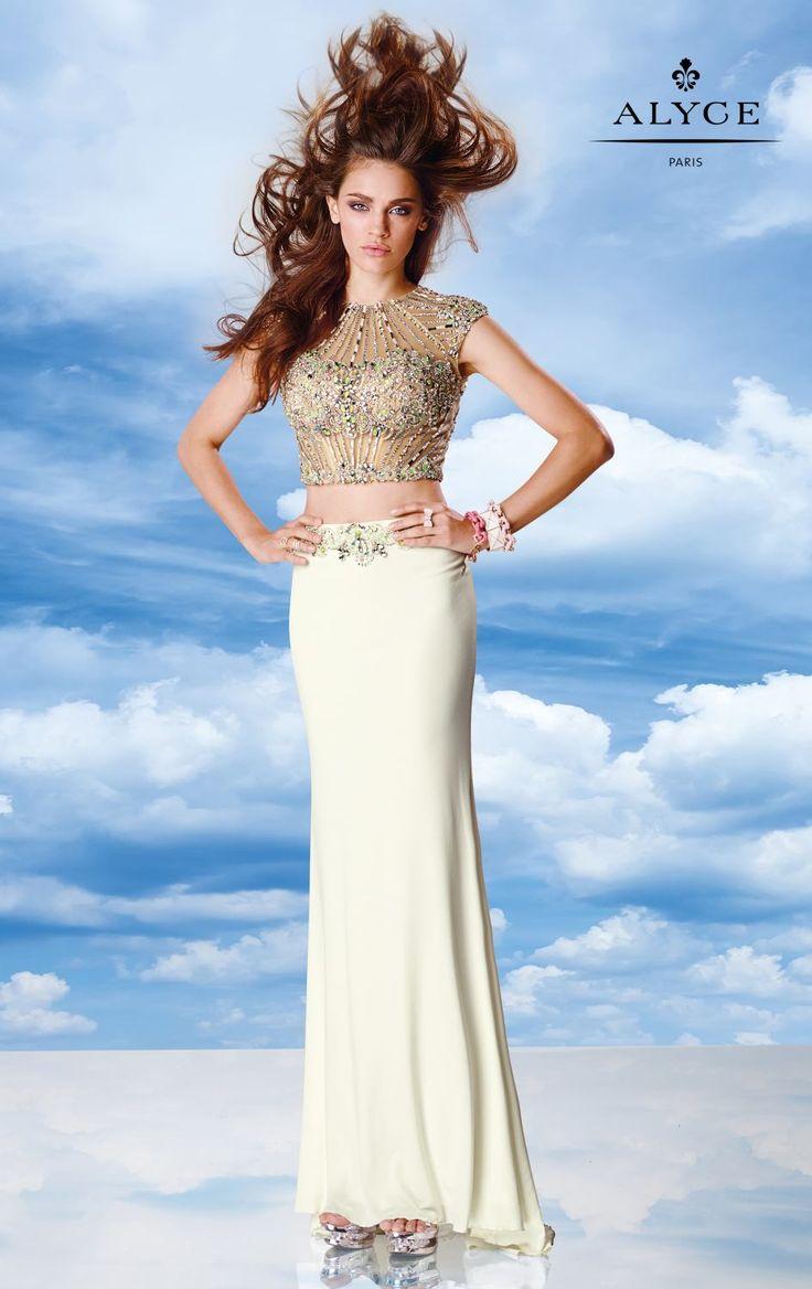 Alyce dress style 6596 sw