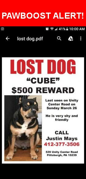 Please spread the word! Cube was last seen in Plum, PA 15239.    Nearest Address: Near Unity Center Rd & Ashland Dr