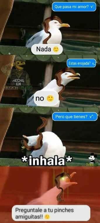 """🦅 ¡Bienvenidos al libro de memes de """"La Gaviota""""! 🦅 (Sé que el emoj… #detodo # De Todo # amreading # books # wattpad"""