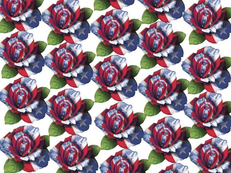 Country Girl  RoseRebel Flower