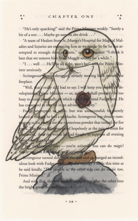 Upcycled Harry Potter page featuring an illustration of Hedwig. The image is pri…